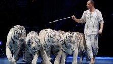 Дресьорът Сергей Нестеров с изпълнение с тигри по време на закриването на Международния цирков фестивал в Монте Карло, Монако.
