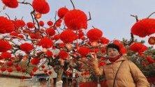 Жена позира за снимка пред дърво, декорирано в червени фенери, в парк в Пекин преди настъпването на Китайската нова година на 25 януари.