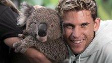 Тенисистът Доминик Тием позира с коала по време на шоу, част от Australian Open в Мелбърн.