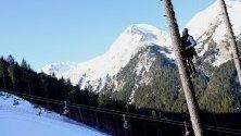 Треньорът на ски-отбора на САЩ Чип Уайт се е покатерил върху дърво за по-добра гледка по време на Световната купа по ски в Банско.