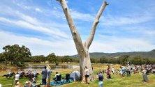 Наблюдаващи конната надпревара Hanging Rock Cup  в Ууденд, Австралия.
