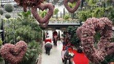 40 новобрачни двойки яздят слонове по време на регистрация на брака им на церемония за Свети Валентин в градината Нонгнуч в град Патая, Тайланд.