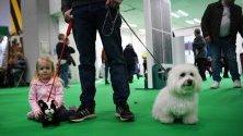 Посетители на кучешкото шоу Crufts в Бирмингам, Великобритания.