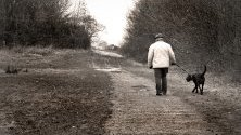 Разходка в парка куче пенсионер